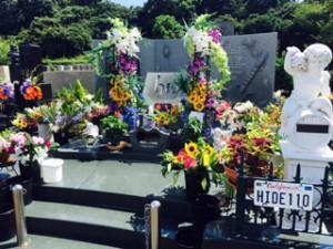 hide grave (3)