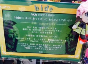 hide grave (8)